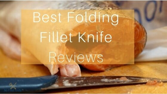 Best Folding Fillet Knife